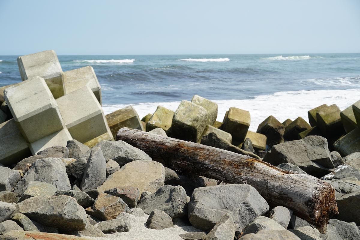 の 日 防災 津波
